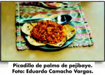 Foto: Eduardo Camacho Vargas